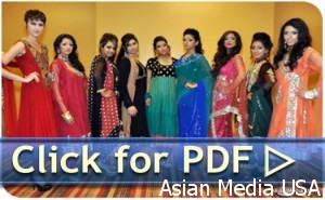 Desi movies in chicago